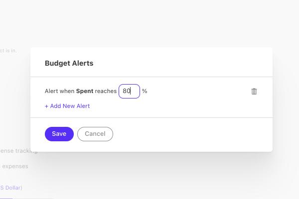 budget percentage alert