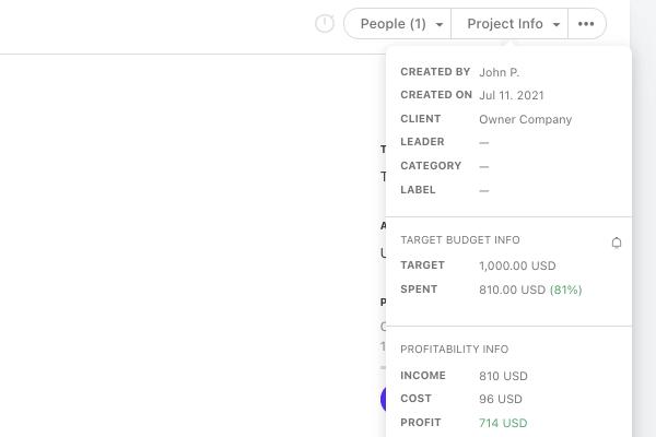 project info profitability